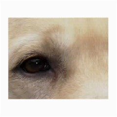 Yellow Labrador Eyes Small Glasses Cloth