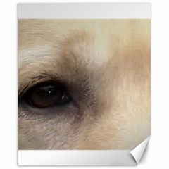 Yellow Labrador Eyes Canvas 16  x 20