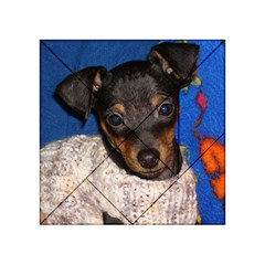 Min Pin In Sweater Acrylic Tangram Puzzle (4  x 4 )