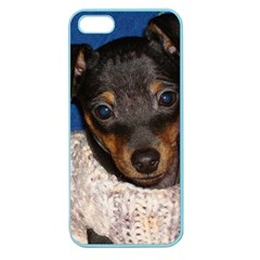 Min Pin In Sweater Apple Seamless iPhone 5 Case (Color)