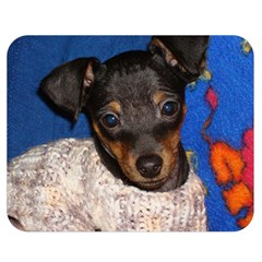 Min Pin In Sweater Double Sided Flano Blanket (Medium)