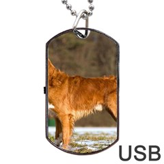 Duck Toller Full Dog Tag USB Flash (Two Sides)