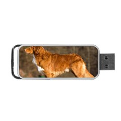 Duck Toller Full Portable USB Flash (Two Sides)