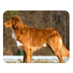 Duck Toller Full Double Sided Flano Blanket (Large)