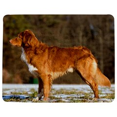 Duck Toller Full Jigsaw Puzzle Photo Stand (Rectangular)