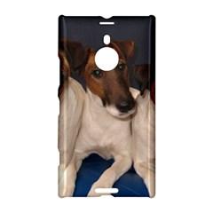 Smooth Fox Terrier Group Nokia Lumia 1520