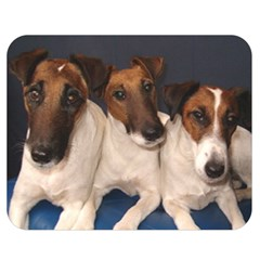 Smooth Fox Terrier Group Double Sided Flano Blanket (Medium)