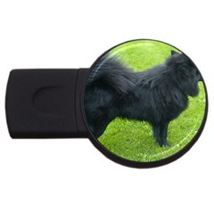 Swedish Lapphund Full USB Flash Drive Round (2 GB)