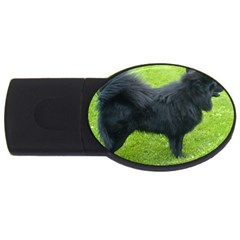 Swedish Lapphund Full USB Flash Drive Oval (1 GB)