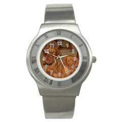 2 Vizslas Stainless Steel Watch