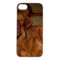 2 Vizslas Apple iPhone 5S/ SE Hardshell Case