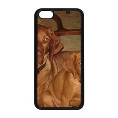 2 Vizslas Apple iPhone 5C Seamless Case (Black)