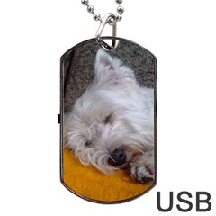 Westy Sleeping Dog Tag USB Flash (One Side)