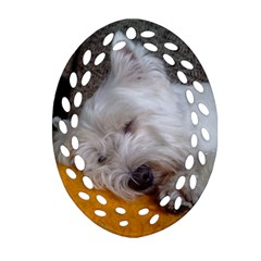 Westy Sleeping Ornament (Oval Filigree)