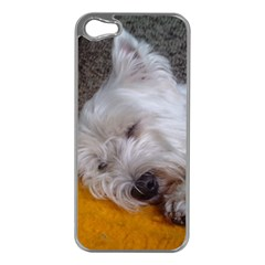 Westy Sleeping Apple iPhone 5 Case (Silver)
