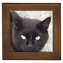 Manx Framed Tiles