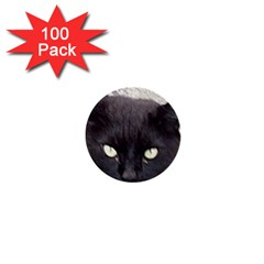 Manx 1  Mini Buttons (100 pack)