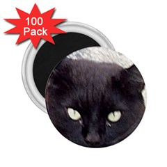 Manx 2.25  Magnets (100 pack)