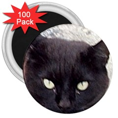 Manx 3  Magnets (100 pack)