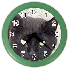 Manx Color Wall Clocks