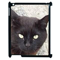 Manx Apple iPad 2 Case (Black)