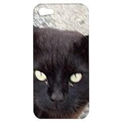 Manx Apple iPhone 5 Hardshell Case