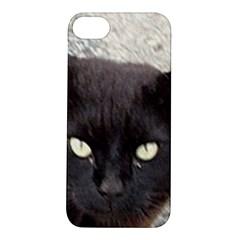 Manx Apple iPhone 5S/ SE Hardshell Case
