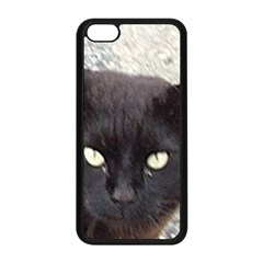 Manx Apple iPhone 5C Seamless Case (Black)