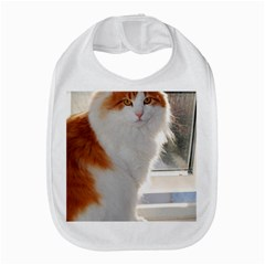 Norwegian Forest Cat Sitting 4 Amazon Fire Phone