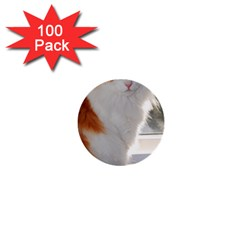Norwegian Forest Cat Sitting 4 1  Mini Buttons (100 pack)