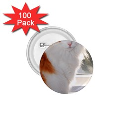 Norwegian Forest Cat Sitting 4 1.75  Buttons (100 pack)