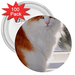 Norwegian Forest Cat Sitting 4 3  Buttons (100 pack)
