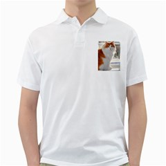 Norwegian Forest Cat Sitting 4 Golf Shirts