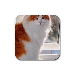 Norwegian Forest Cat Sitting 4 Rubber Coaster (Square)