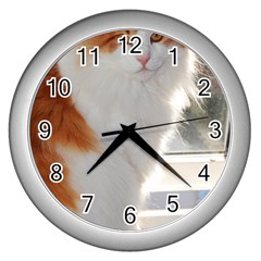 Norwegian Forest Cat Sitting 4 Wall Clocks (Silver)