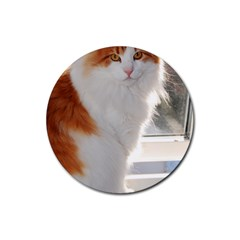 Norwegian Forest Cat Sitting 4 Rubber Round Coaster (4 pack)