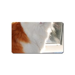 Norwegian Forest Cat Sitting 4 Magnet (Name Card)