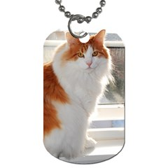 Norwegian Forest Cat Sitting 4 Dog Tag (Two Sides)