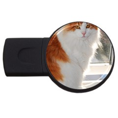 Norwegian Forest Cat Sitting 4 USB Flash Drive Round (1 GB)