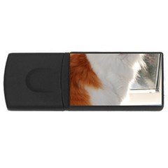 Norwegian Forest Cat Sitting 4 USB Flash Drive Rectangular (2 GB)