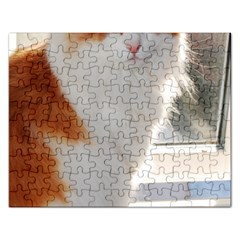 Norwegian Forest Cat Sitting 4 Rectangular Jigsaw Puzzl