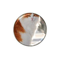 Norwegian Forest Cat Sitting 4 Hat Clip Ball Marker (4 pack)