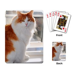 Norwegian Forest Cat Sitting 4 Playing Card