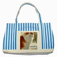 Norwegian Forest Cat Sitting 4 Striped Blue Tote Bag