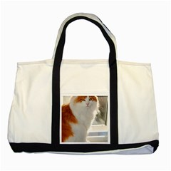 Norwegian Forest Cat Sitting 4 Two Tone Tote Bag