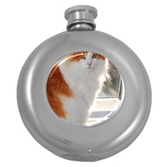 Norwegian Forest Cat Sitting 4 Round Hip Flask (5 oz)