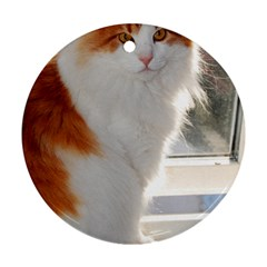 Norwegian Forest Cat Sitting 4 Round Ornament (Two Sides)