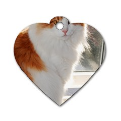 Norwegian Forest Cat Sitting 4 Dog Tag Heart (Two Sides)