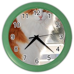 Norwegian Forest Cat Sitting 4 Color Wall Clocks