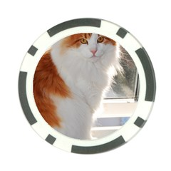 Norwegian Forest Cat Sitting 4 Poker Chip Card Guards